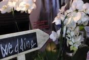 Piccole Gioie: matrimonio country chic!