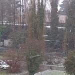 Neve a Rovigo