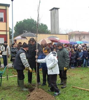 Scuola Chioggia 1