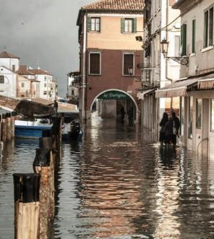 Chioggia By Paolo Fidelfatti