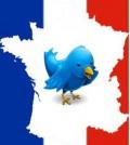 twitter-france-300x296