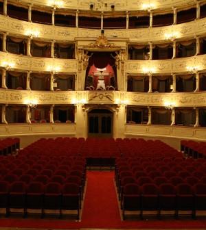 Teatro Sociale Sala Principale (1)