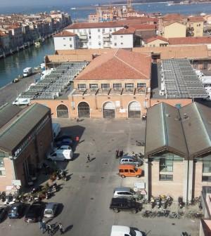 mercato ittico chioggia piazzaweb
