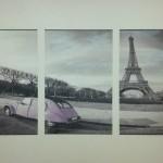 Imprinting Art Group e Camaleonte