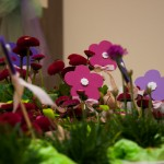 Mercatino di Primavera Mobilveneto
