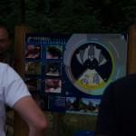 Pipistrelli Bosco Nordio