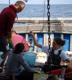 Fermo Pesca 2