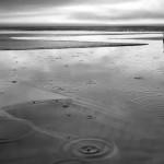 Franco Donaggio Reflections
