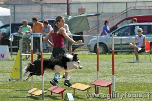 Sky Dog Talent campionessa agility