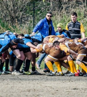rugby leoni