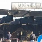 Sugareef bruciato 3