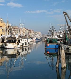 Nuova Scintilla 28/7/2013 Chioggia: canale San Domenico
