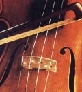 Violino-2