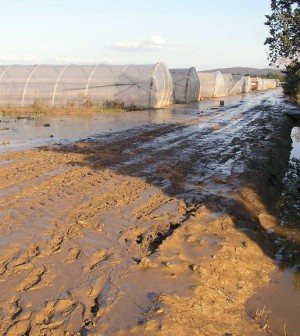 agricoltura danni