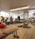fitness_palestra