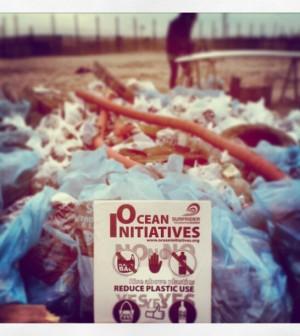 iniziative oceaniche 2014