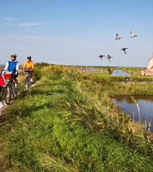 Bicicletta- slow lagoon-turismo lento