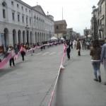 Sciarpa Rosa 4