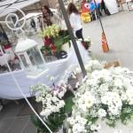 chioggia mercatini di primavera (35)