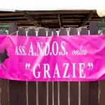 20140514-161646-ANDOS-Sciarpa rosa 2014