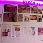 20140514-161803-ANDOS-Sciarpa rosa 2014