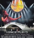 Venice floyd 2