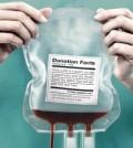 donare_sangue_530x400