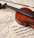 00126-violino