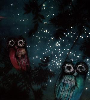 ca roman notte delle stelle