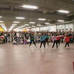 festa della zucca 2014 Chioggia