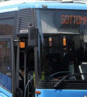 autobus ok