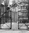 20140127_093551-Auschwitz_cancello