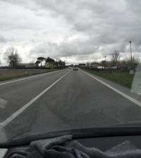 romea_n
