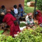 Kenya 2015: Sagana - St Mary's Village