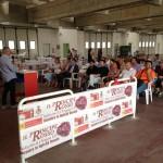 Radicchio di Chioggia (5)