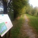 Insieme con gusto cicloturismo Idrovora Ca Bianca e oasi Ca di Mezzo (3)