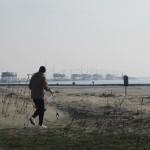 Amico Giardiniere pulizia spiaggia Sottomarina (16)
