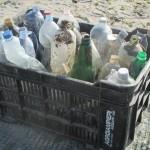 Amico Giardiniere pulizia spiaggia Sottomarina (2)