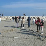 Amico Giardiniere pulizia spiaggia Sottomarina (5)
