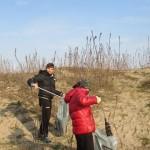 Amico Giardiniere pulizia spiaggia Sottomarina (8)