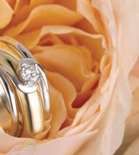 vera gioielli perini oro (1)