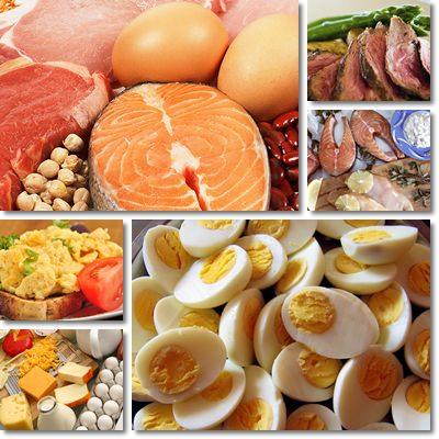 Proteine: le differenze alimentari tra sedentari e sportivi ...