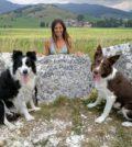 Dog Talent addestratrice Roberta Boscolo