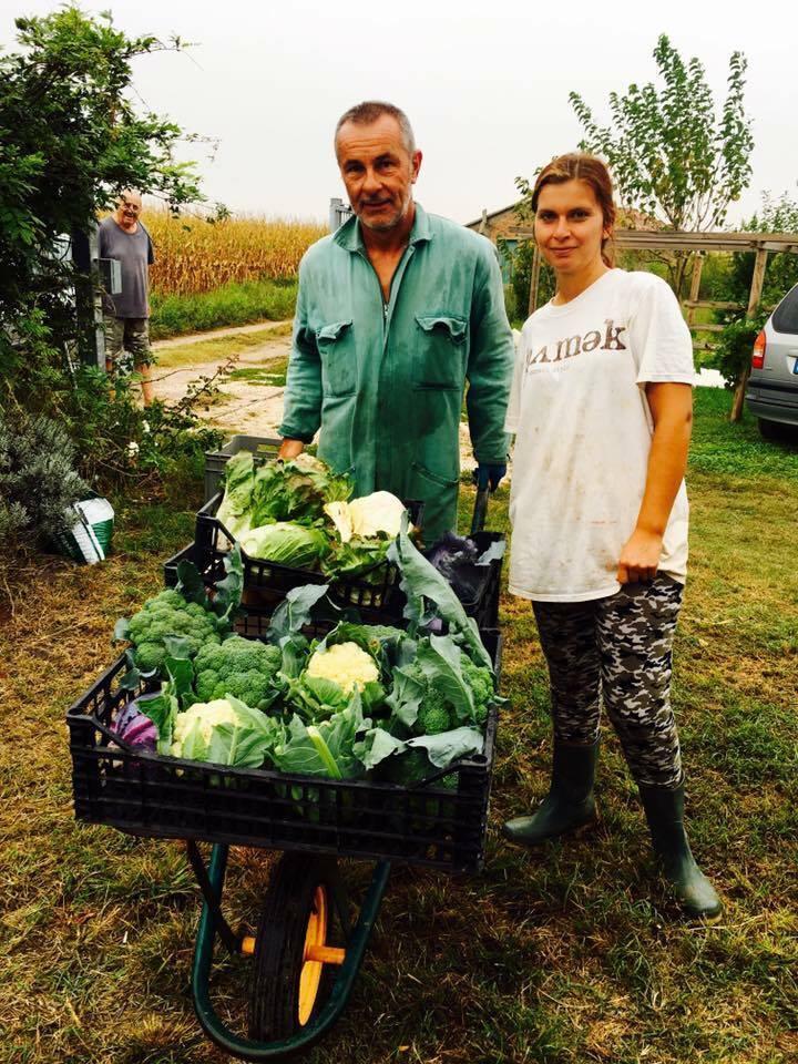 Video e foto a chioggia il nuovo negozio le verdure di for Il gomitolo di camilla