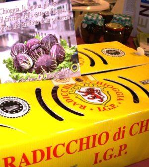 Confezione Radicchio e depliant Chioggia