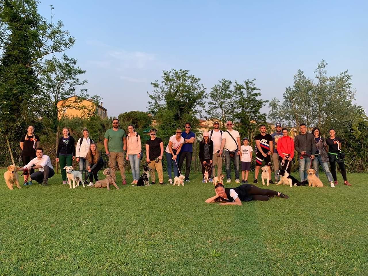 6dog talent scuola educazione cani chioggia padova
