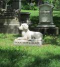 cimitero-animali-fvg