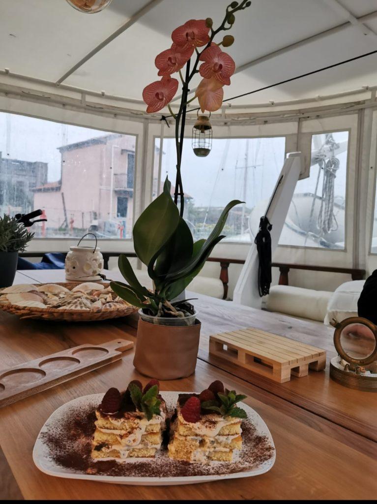 Caicco-orchidea